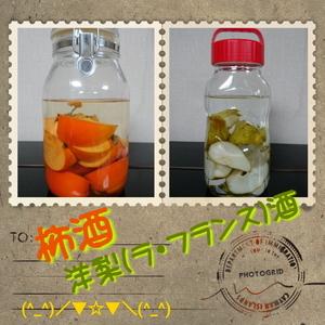 柿酒&洋梨酒1.jpg